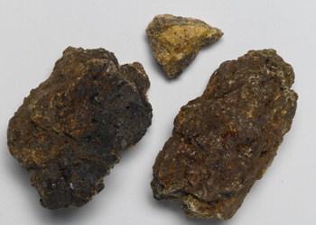 commiphora myrrha essudato 1871